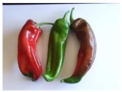 Chilli Bull Horn Red/Green - each