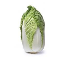 Chinese Cabbage - Wombok - half