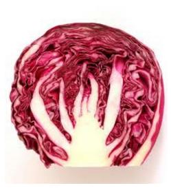 Cabbage Red - Half