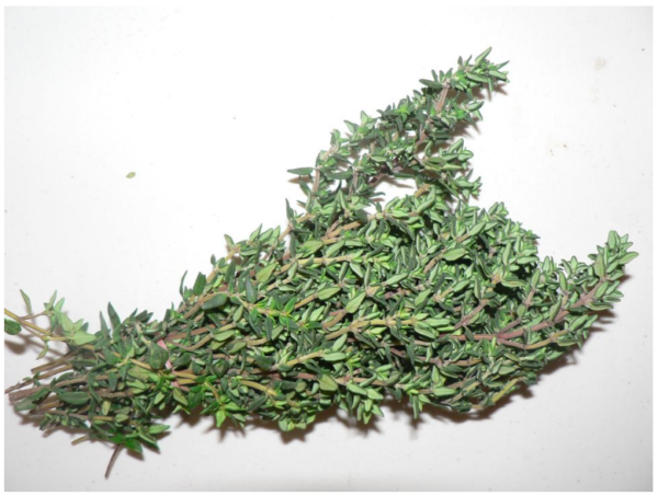 Rosemary - per bunch