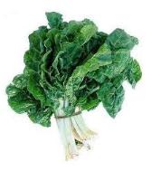 Spinach Silverbeet - per bunch