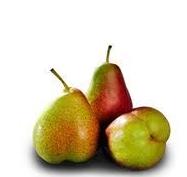 Pear Corella - each