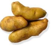 Potato Kipfler - KG